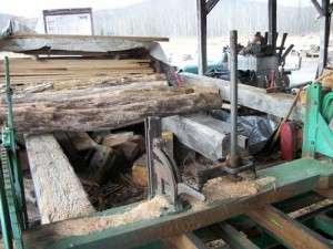 Uncut wood